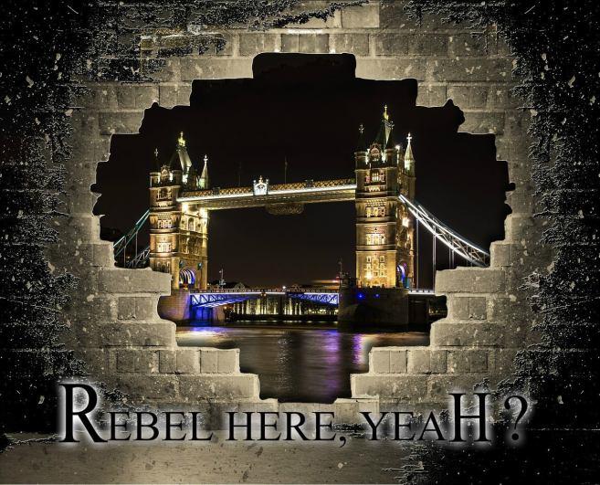Rebel Vampires fantasy series